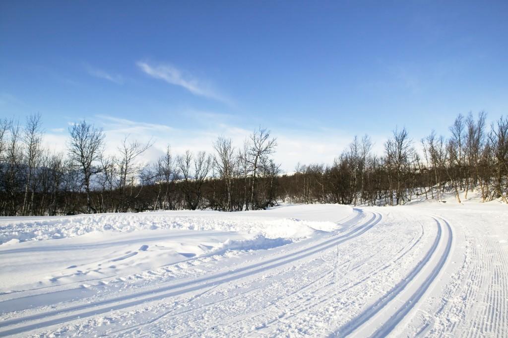 Så här mycket snö önskar arrangörerna av Engelbrektsloppet att det skulle vara just nu.