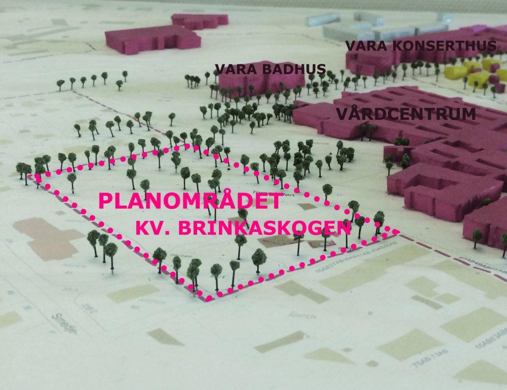 Planområdet Brinkaskogen