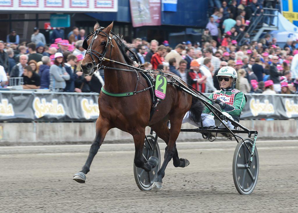 Resolve och Åke Svanstedt kommer till Elitloppet även i år. Foto: Lars Jakobsson/Kanal75