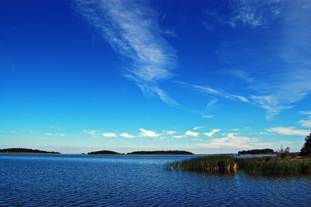 Vid Vänerns strand i Lidköpings kommun gäller strandskyddet 300 meter.