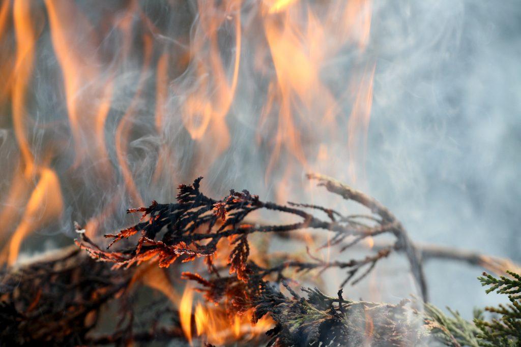 Eldningsförbud råder i praktiken i hela Skaraborg.