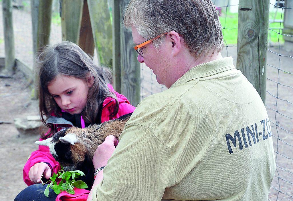 På Mini-Zoo i Tibro får man klappa djuren. Det är också ett bidragande skäl till att parken är så populär, menar arbetsledare Carina Holm.