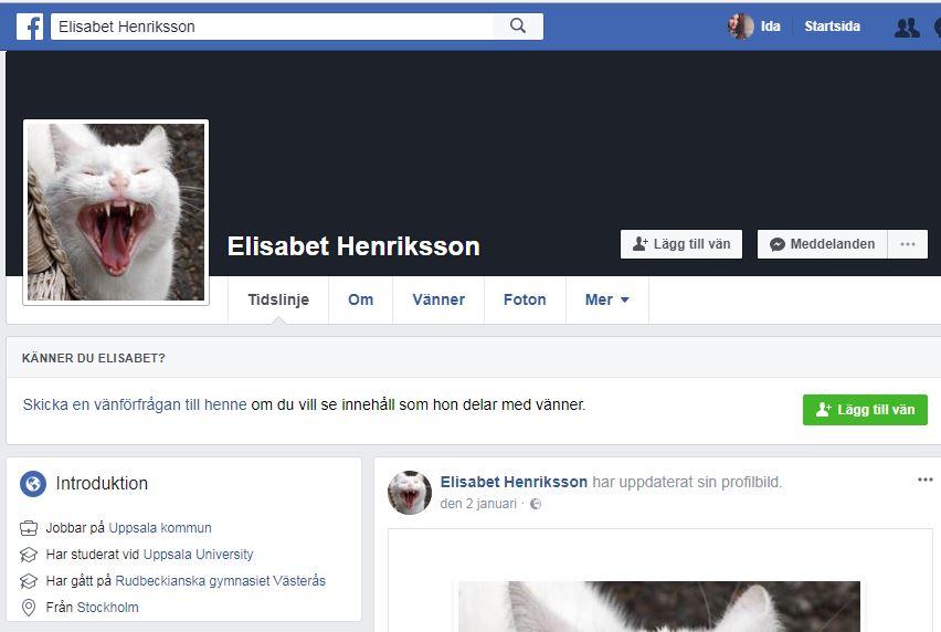 Vem är Elisabet Henriksson som i flera år ingående kommenterat Skara-politiken? Personen finns överhuvudtaget inte. Det är ett exempel på nättroll som vill påverka vad som sker i Skara. Men vem ligger bakom?