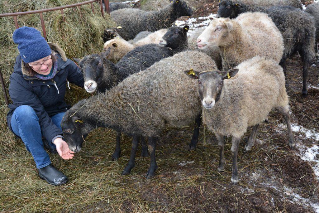 På gården strax utanför Lidköping finns det i dagsläget 29 får. – Men jag gör inte korv av mina egna djur, de är mer en image för mitt företag, säger Agnetha Björnsdotter Berglund som driver företaget Kullans Lycka.
