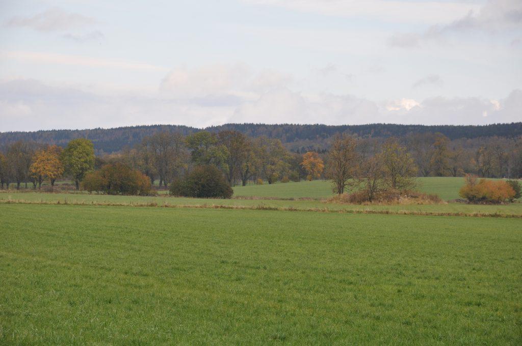 Planerna att bryta uran kring Billingen och övriga Västgötaberg förbjuds från augusti 2018.